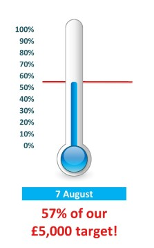 thermometer aug 7